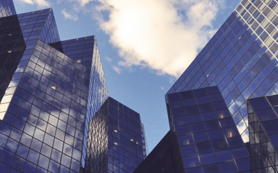What is limited liability and what protection does it provide to my company?